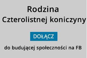 FB_czterolistna koniczyna_N