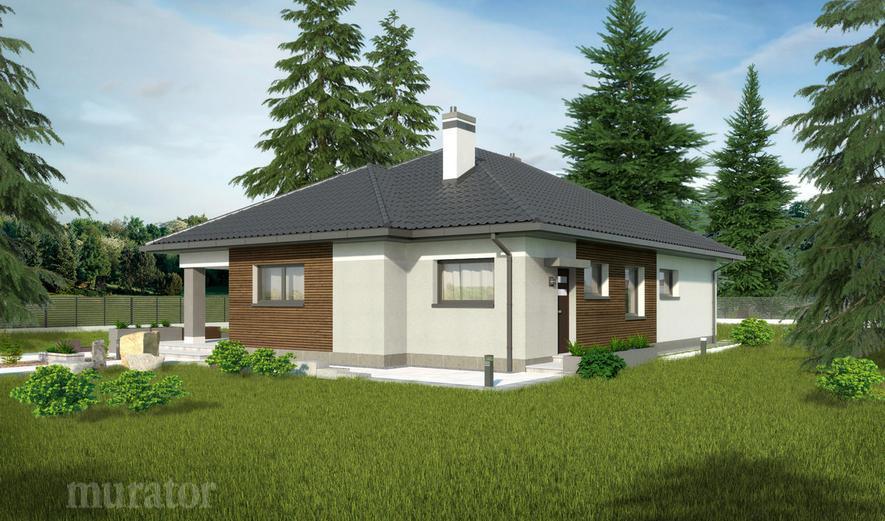 C332 Dom wśród drzew