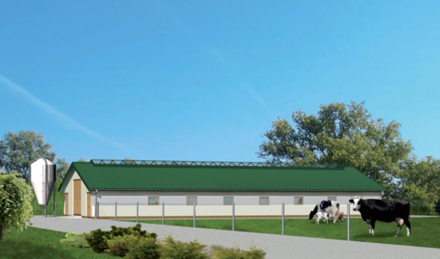 O03 Obora dla 39 krów mlecznych, uwięziowa,  (stanowiskowa) na płytkiej ściółce
