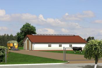 Obora dla 21 krów mlecznych, uwięziowa (stanowiskowa), na płytkiej ściółce
