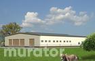 OC01 Obora dla 43 krów mlecznych, wolnostanowiskowa (boksowa), na płytkiej ściółce